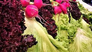 Özlenen kış sebzeleri pazardaki yerlerini alıyor