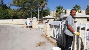 Kıbrıs Şehitliği bakıma alındı