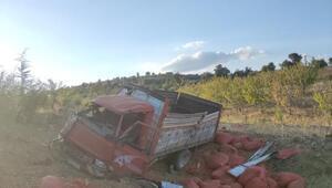 Kulada, kontrolden çıkan badem yüklü kamyonet devrildi: 2 yaralı