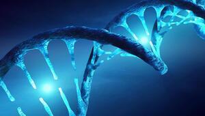 Ağır seyreden koronavirüs vakalarının sorumlusu Neandertal genleri mi