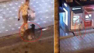 Alkollü turist, önce ATMyi sonra sokak köpeğini tekmeledi