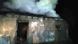 Erciş'te odunluk yangını