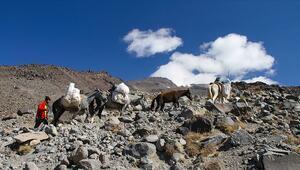 Türkiyenin Çatısına tırmanan dağcıların yükünü katırlar sırtlıyor