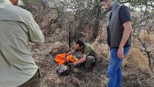 Edirnede 98 avcı kontrol edildi, 16 ses düzeneğine el konuldu
