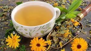 Doğru Yöntemlerle Hasat Edilmeyen Baharat ve Bitki Çayları Sağlığı Tehdit Ediyor