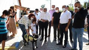 Başkan Bozdoğan hayvanseverlerle buluştu