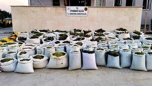 Diyarbakır'da 2 ton 628 kilo esrar ile 826 bin kök kenevir ele geçirildi