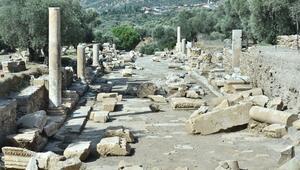 Nysa ve Teos kazıları sürüyor