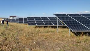Kurduğu güneş enerjisiyle 3 bin haneye elektrik getiriyor