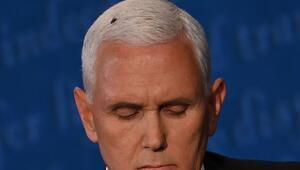ABDde başkan yardımcısı adayları Pence ve Harris karşı karşıya geldi, tartışmaya sinek damga vurdu