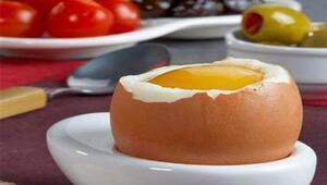 Yumurta anne sütünden sonra en kıymetli proteindir