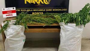 Narkotikten sokak satıcılarına operasyon: 4 gözaltı