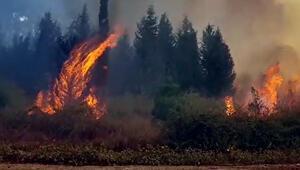 Son dakika haberi: Kahramanmaraşta 4 ayrı noktada yangın