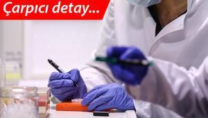 Son dakika haberi: Sağlık Bakanlığının Koronavirüs Erişkin Hasta Tedavi Rehberi güncellendi