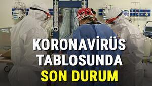 İllere göre koronavirüs (coronavirüs) 15 Ekim Türkiye günlük vaka tablosu  - Covid 19 haritası ve il il korona virüs tablosunda vaka, iyileşen, hasta sayısı