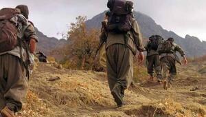 Bakanlık duyurdu 5 terörist teslim oldu