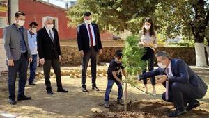 Minikler okul bahçesine fidan dikip can suyu verdi