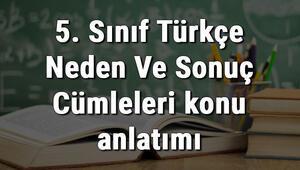 5. Sınıf Türkçe Neden Ve Sonuç Cümleleri konu anlatımı