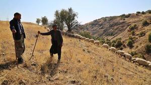 Tunceli'de göçerlerin zorlu dönüş yolculuğu başladı