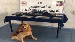 Çankırı'da uyuşturucu operasyonunda 3 tutuklama