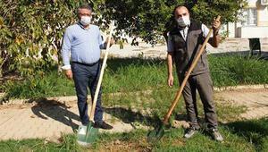 Gazipaşa'da iki okul bahçesine fidan dikildi