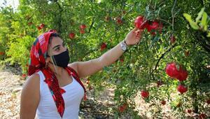 Kooperatifleşen çiftçi kadınlara destek