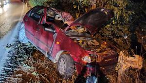 Otomobil, taklalar atarak ağaca çarptı: 2 ağır yaralı