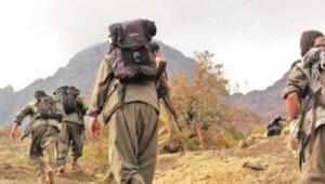 Şırnakta etkisiz hale getirilen PKKlı terörist sayısı 3e yükseldi