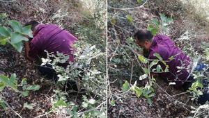 Çete lideri ormanda saklanırken böyle yakalandı