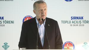 Son dakika... Cumhurbaşkanı Erdoğan: Yurt dışı patentli iktidara gelme senaryoları boşa çıkacaktır