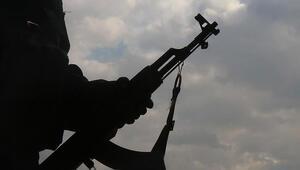 Son dakika haberler: Terör örgütü PKK Karsta böyle örgütlenmiş
