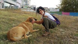 Çocuğu olmadı, hayatını sokak hayvanlarına adadı