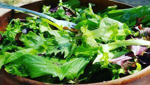 Yeşilliklerinizin 10 gün boyunca taze kalmasını sağlamanın yolları