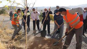 Talas'ta ağaç dikme etkinliği düzenlendi