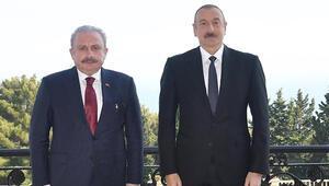 TBMM Başkanı Şentop, Azerbaycan Cumhurbaşkanı Aliyevle görüştü