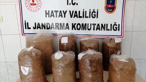 Kaçak tütün satan pazarcıya para cezası