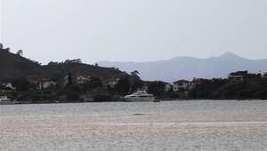 Son dakika haberler: Antalyayı fırtına vurdu, bir kişi hayatını kaybetti... Fethiyede denizin rengi değişti