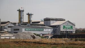 Ankara Şeker Fabrikası, 465 bin ton pancar işleyecek