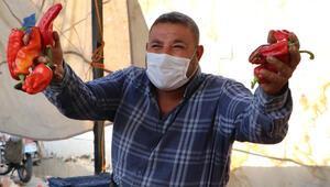 'Koronavirüsten koruyor' iddiası kenti karıştırdı Açıklama geldi…