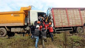 Bolu'da kamyonlar, kafa kafaya çarpıştı: 2 yaralı