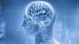Bilim insanları açıkladı Kafatasında yeni bir organ
