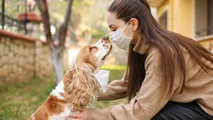 10 maddede pandemide evcil hayvan bakımı