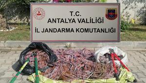 Antalyada kablo hırsızlığı: 6 şüpheli yakalandı