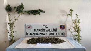 Mardinde uyuşturucu operasyonu: 2 gözaltı