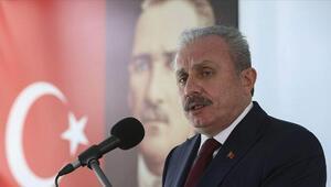 TBMM Başkanı Şentop: Türkiye salgın sürecini en az zararla yürüttü