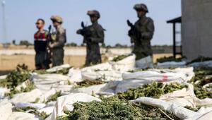 Diyarbakırda 877 kilogram esrar ele geçirildi