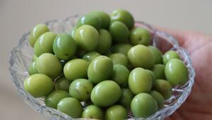 Bu zeytini tatlandırmak uzmanlık istiyor: Bilmeyen evde denemesin