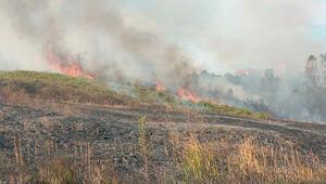 Samsunda anız yangını