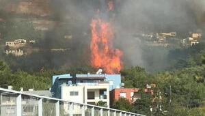 Hatayda bir orman yangını daha