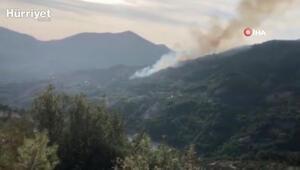 Son dakika haberler... Adananın Kozan ilçesinde orman yangını
